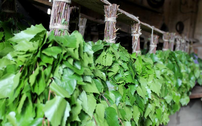 Вязка веников для бани - идеальный вариант малого бизнеса в деревенском доме