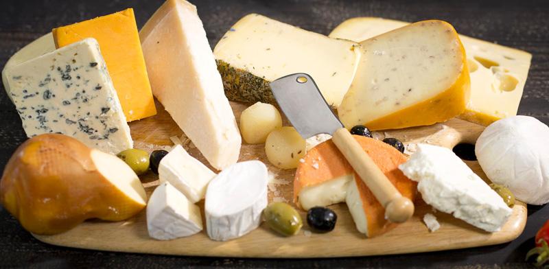 Производством сыров следует заниматься только специалистам, имеющим профильное образование и навыки