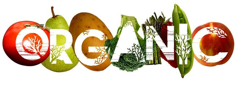Поставки экологически чистых овощей и фруктов