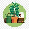 Бизнес на дому: что выгоднее всего выращивать в собственной квартире или на даче