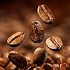 Открыть собственную кофейню с нуля: как начинается кофейный бизнес