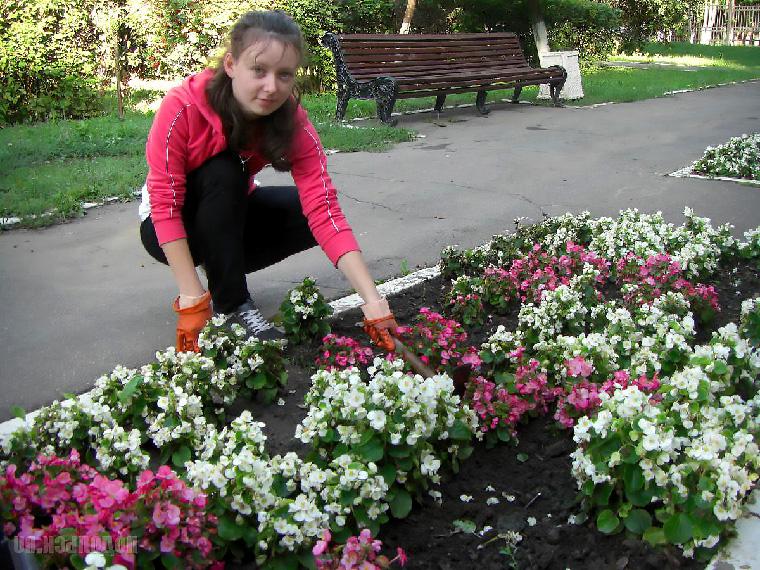 Работы по озеленению участка или сада